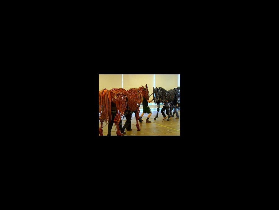 Behind the Scenes - War Horse - tour - rehearsal video - square 7/12